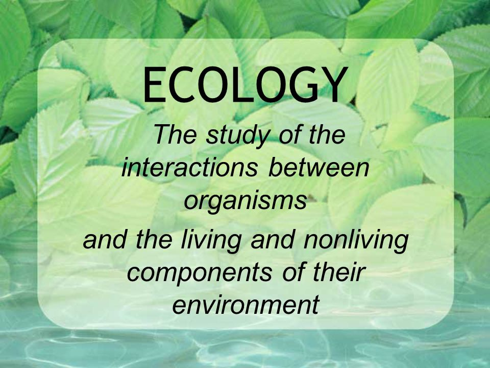 ECOLOGY The study of the interactions between organisms and the living and nonliving components of their environment