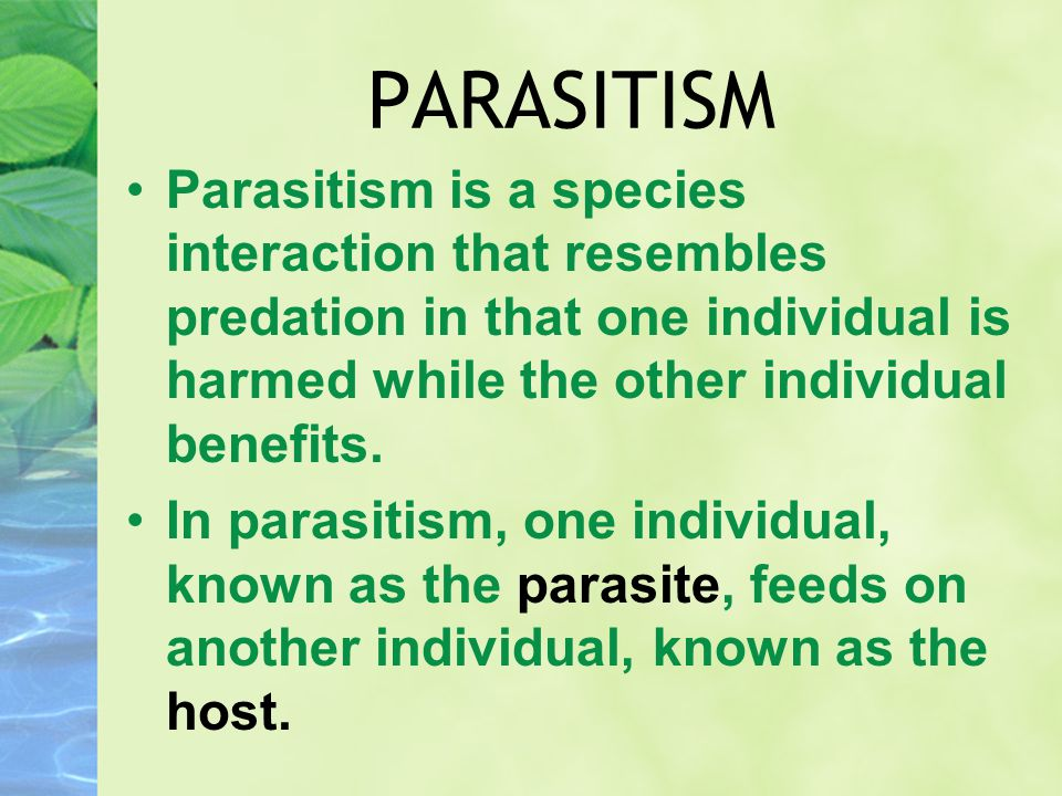 PARASITISM Parasitism is a species interaction that resembles predation in that one individual is harmed while the other individual benefits. In paras