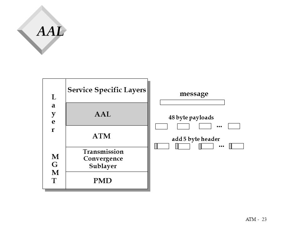 23 ATM - AAL Service Specific Layers ATM Transmission Convergence Sublayer PMD Layer MGMT Layer MGMT...