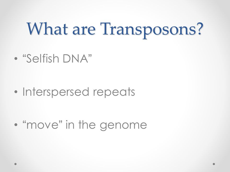 What are Transposons? Selfish DNA Interspersed repeats move in the genome