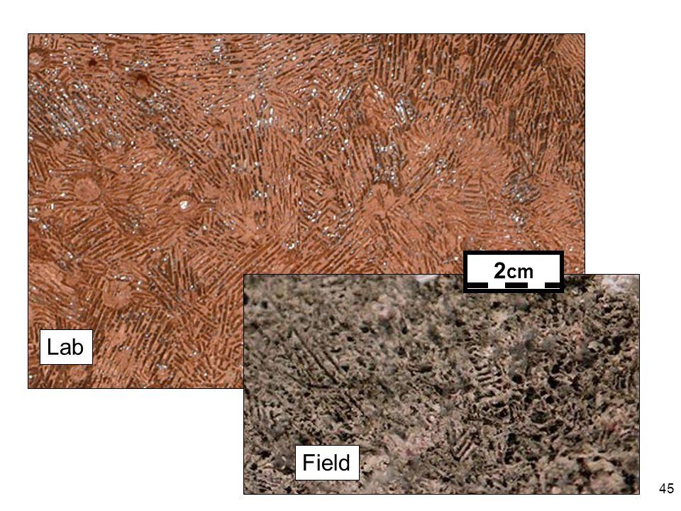 45 Lab Field 2 cm