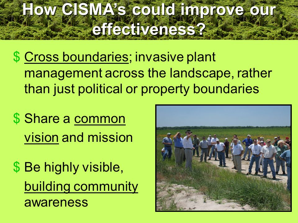 $Cross boundaries; invasive plant management across the landscape, rather than just political or property boundaries $Share a common vision and mission $Be highly visible, building community awareness How CISMA's could improve our effectiveness