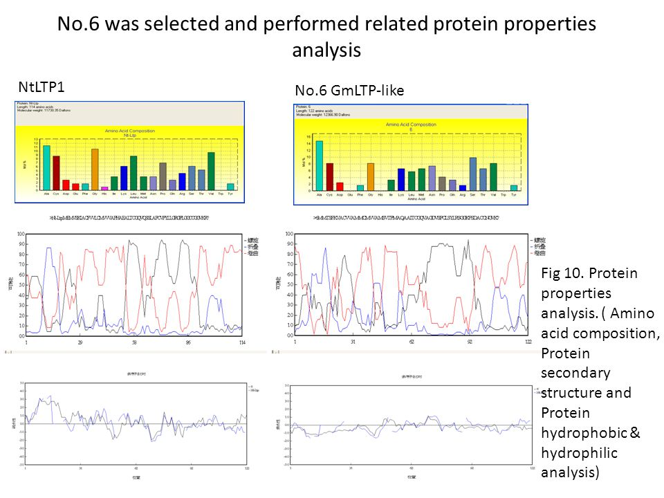 No.6 was selected and performed related protein properties analysis Fig 10.