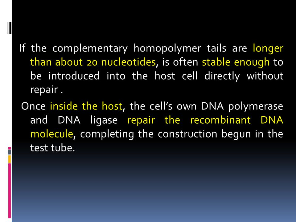 If the complementary homopolymer tails are longer than about 20 nucleotides, is often stable enough to be introduced into the host cell directly witho