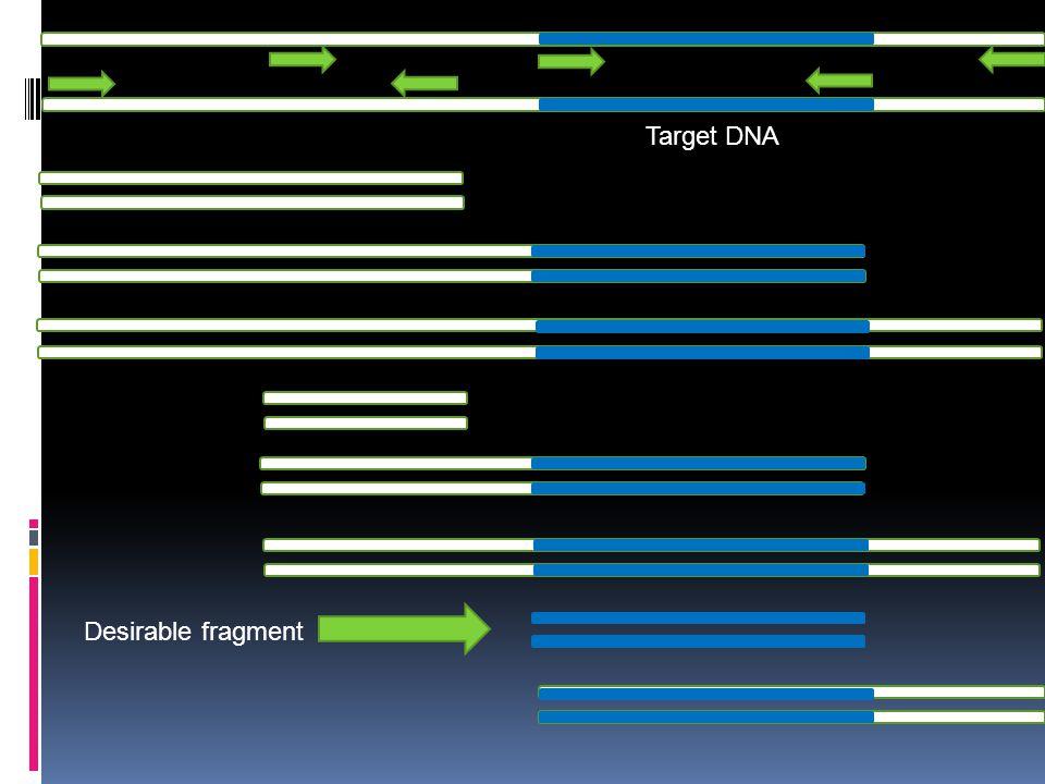 Target DNA Desirable fragment