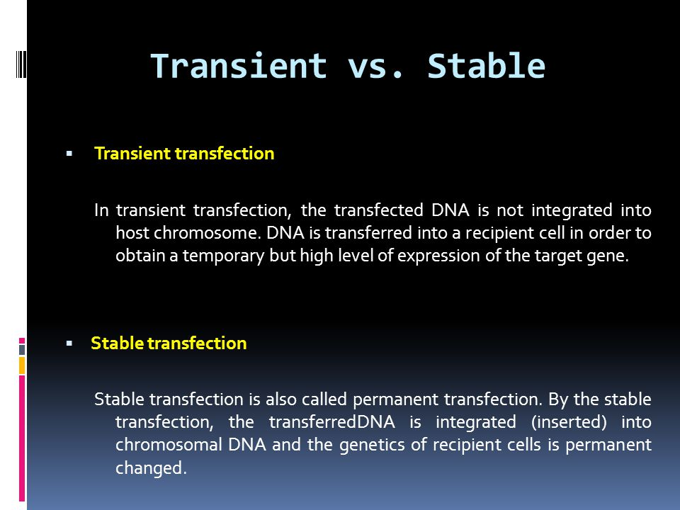 Transient vs. Stable  Transient transfection In transient transfection, the transfected DNA is not integrated into host chromosome. DNA is transferre