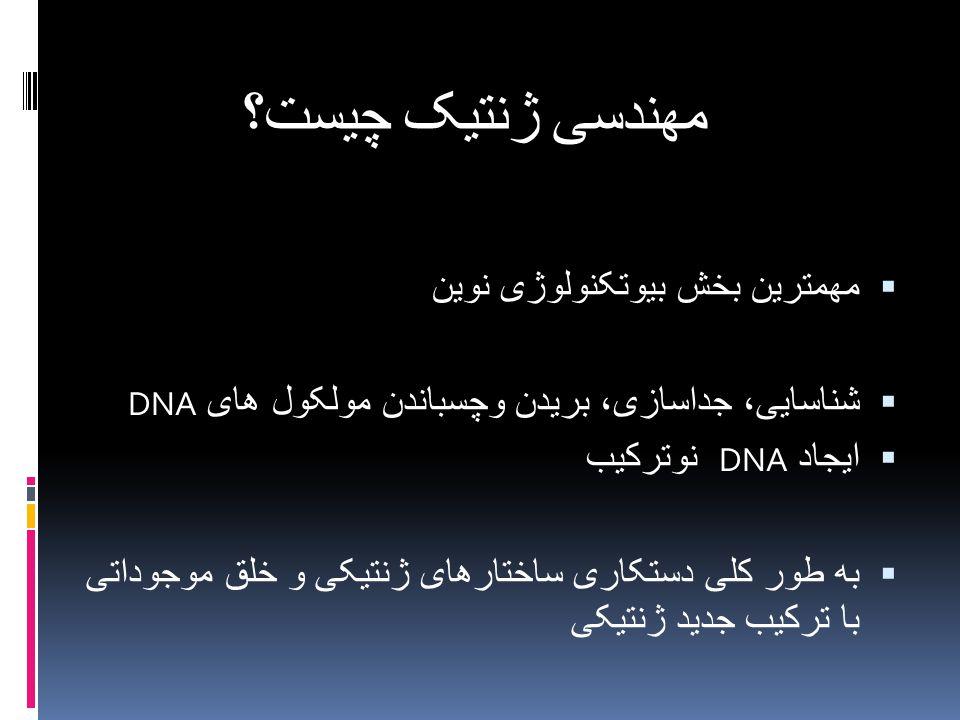 مهندسی ژنتیک چیست؟  مهمترین بخش بیوتکنولوژی نوین  شناسایی، جداسازی، بریدن وچسباندن مولکول های DNA  ایجاد DNA نوترکیب  به طور کلی دستکاری ساختارهای