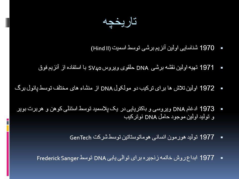تاریخچه  1970 شناسایی اولین آنزیم برشی توسط اسمیت Hind II))  1971 تهیه اولین نقشه برشی DNA حلقوی ویروس SV40 با استفاده از آنزیم فوق  1972 اولین تلا