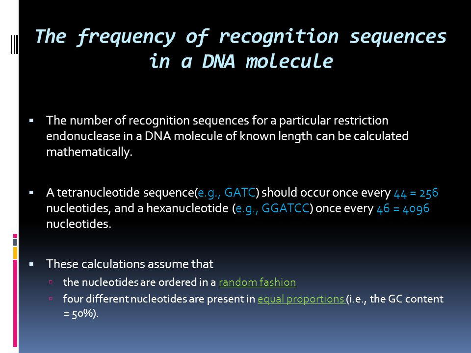 The frequency of recognition sequences in a DNA molecule  The number of recognition sequences for a particular restriction endonuclease in a DNA mole