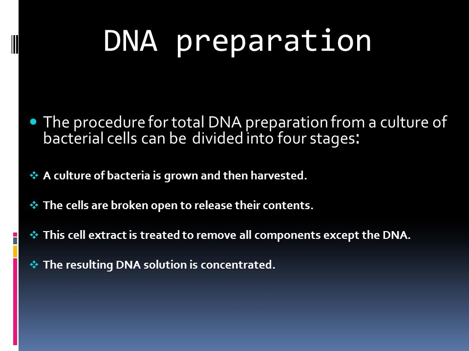 DNA Extraction  1- Breaking the cell walls, commonly referred to as cell disruption or cell lysis, to expose the DNA within.