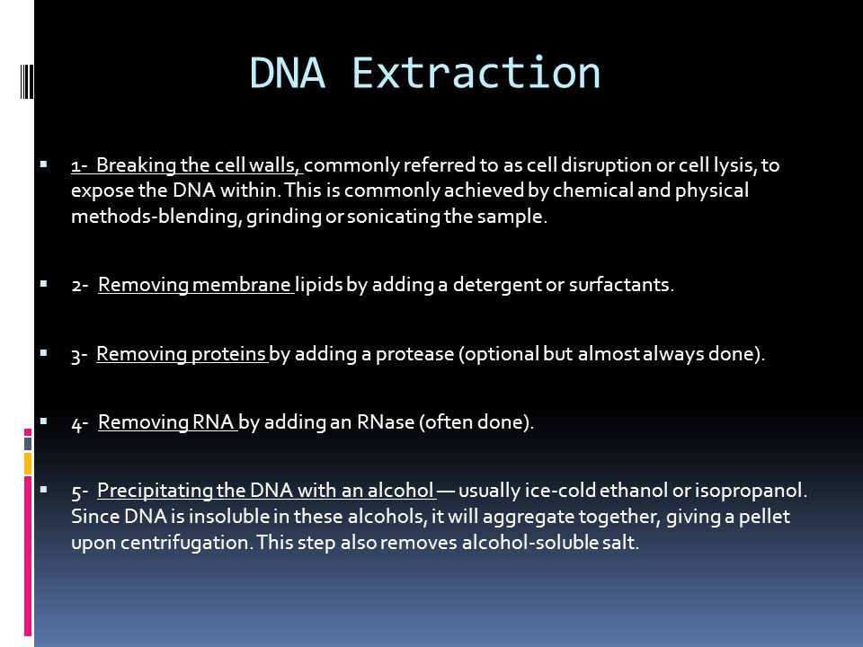 DNA Extraction  1- Breaking the cell walls, commonly referred to as cell disruption or cell lysis, to expose the DNA within. This is commonly achieve