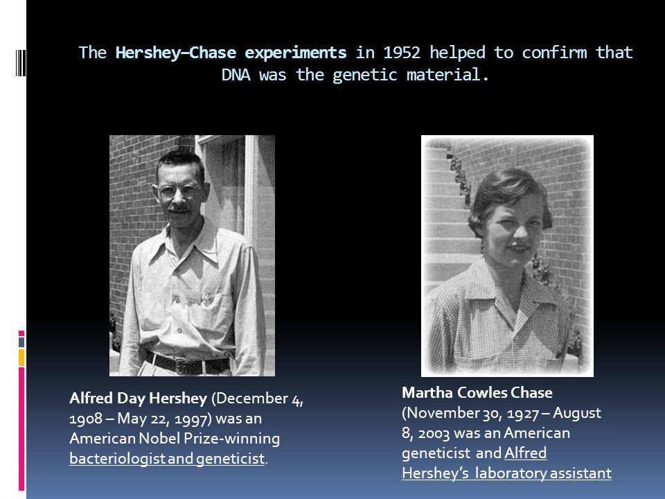 The Hershey–Chase experiments in 1952 helped to confirm that DNA was the genetic material. Alfred Day Hershey (December 4, 1908 – May 22, 1997) was an