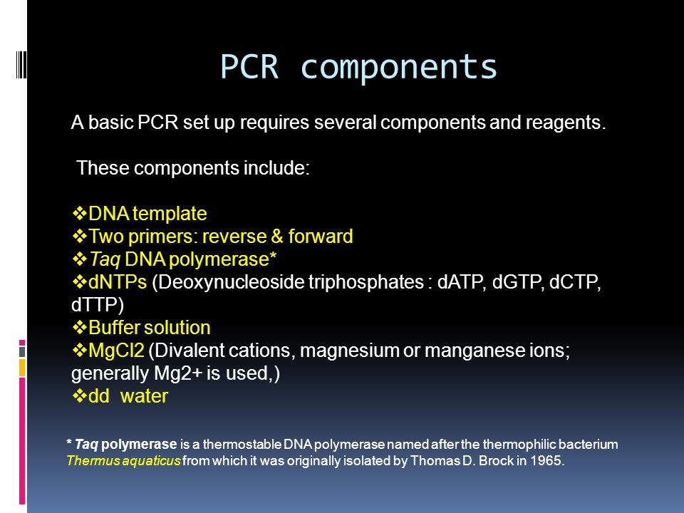 PCR components A basic PCR set up requires several components and reagents. These components include:  DNA template  Two primers: reverse & forward