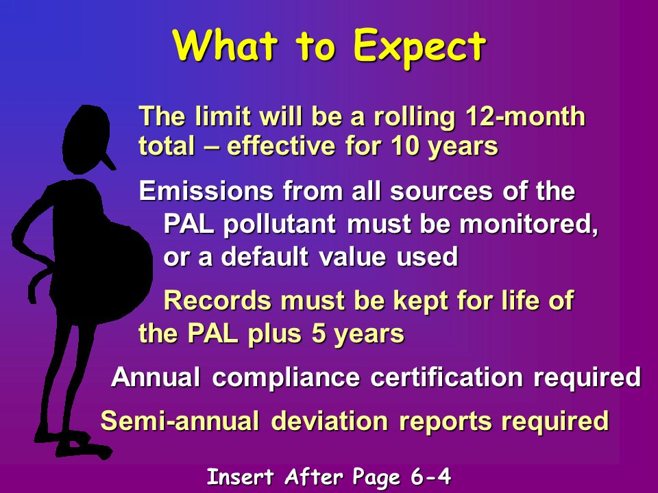 What to Expect The limit will be a rolling 12-month total – effective for 10 years Emissions from all sources of the PAL pollutant must be monitored,