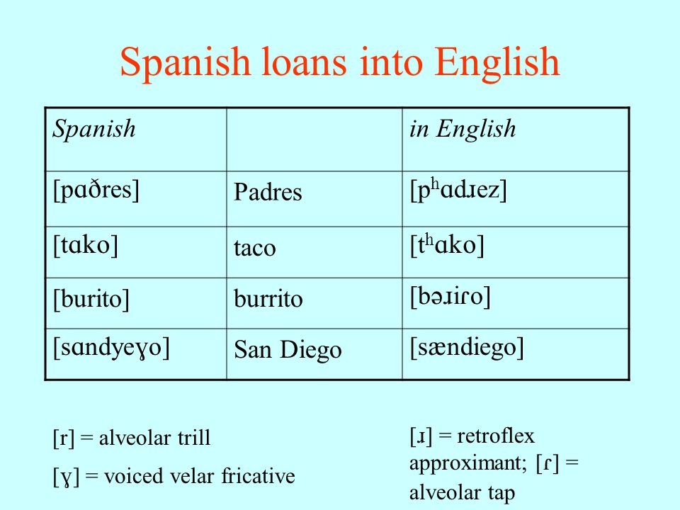 Foreign accents and borrowed words Borrowed words –often pronounced according to phonological rules of borrowing language Foreign accents –result from application of native language phonology to target language phonology –especially if language learned as adult