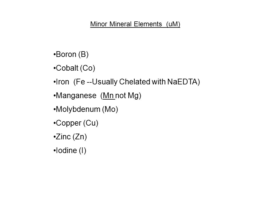 Major Mineral Nutrients (mM) Nitrogen as Either Nitrate (NO 3 ) and Ammonium (NH 4 )Nitrogen as Either Nitrate (NO 3 ) and Ammonium (NH 4 ) KNO 3, NH