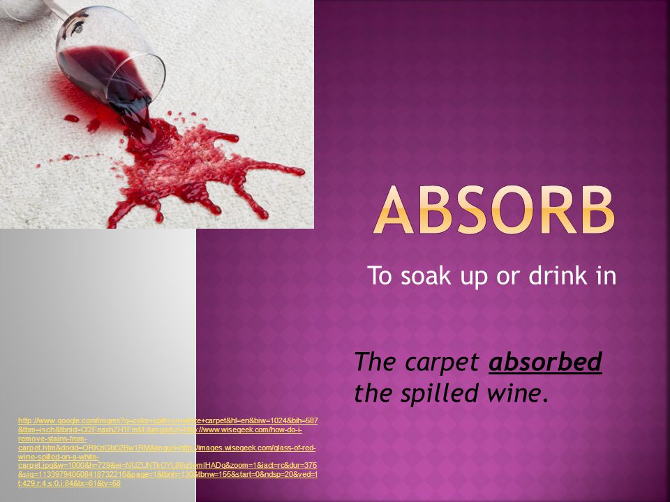 To soak up or drink in The carpet absorbed the spilled wine.
