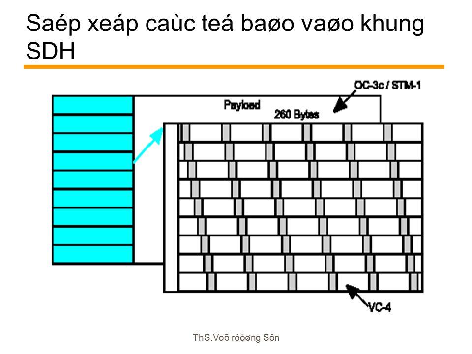 ThS.Voõ röôøng Sôn Saép xeáp caùc teá baøo vaøo khung SDH