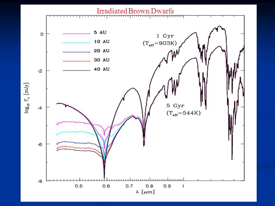 Irradiated Brown Dwarfs