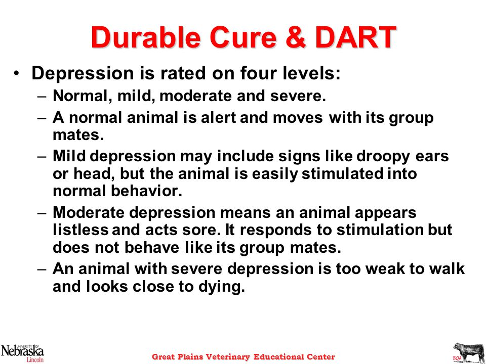Great Plains Veterinary Educational Center Durable Cure & DART Depression is rated on four levels: –Normal, mild, moderate and severe. –A normal anima
