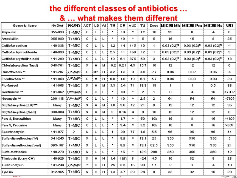 Great Plains Veterinary Educational Center the different classes of antibiotics … & … what makes them different