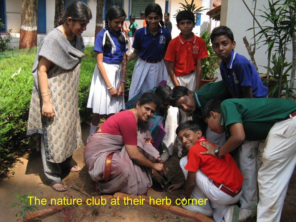 The nature club at their herb corner