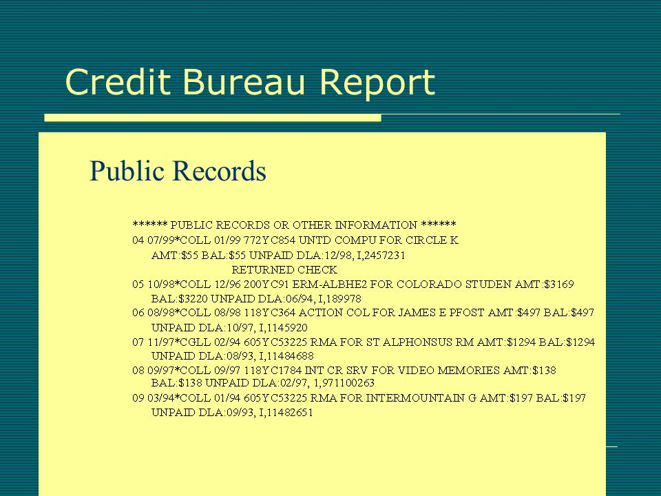 Credit Bureau Report Debtor Information