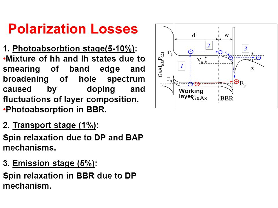  Working layer Polarization Losses 1.