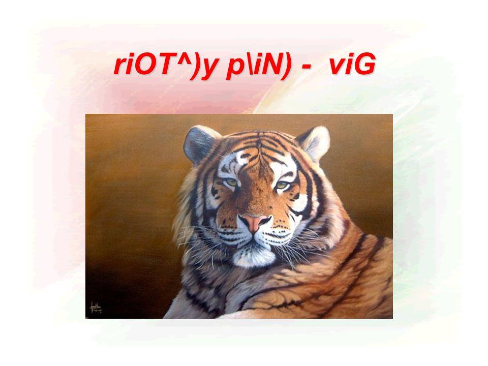 riOT^)y p\iN) - viG