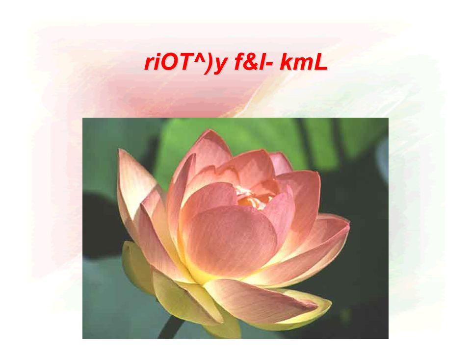 riOT^)y f&l- kmL