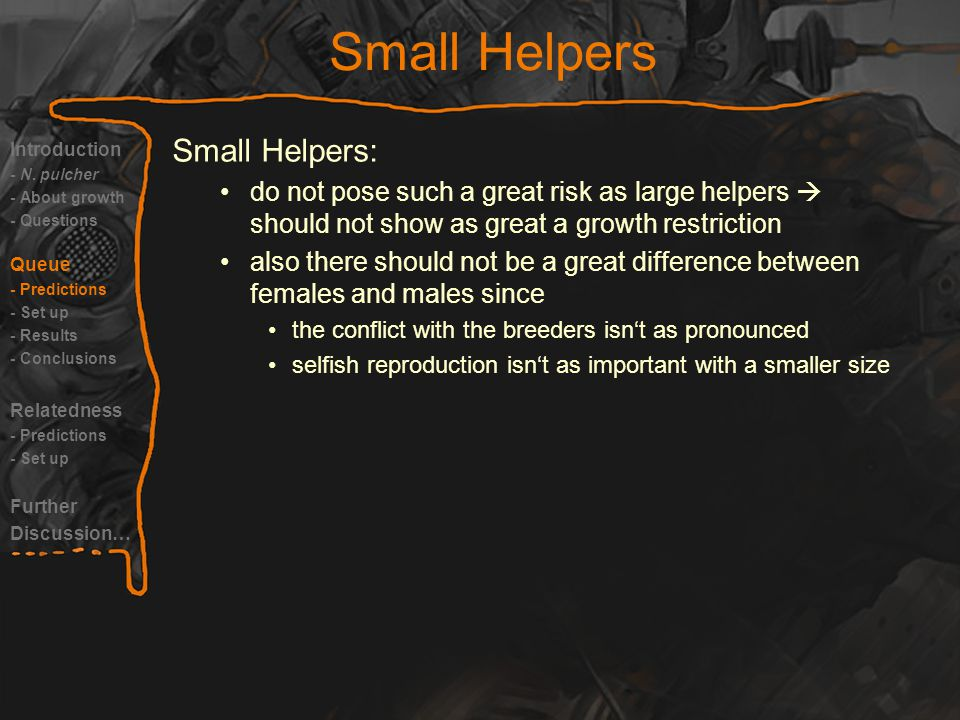 Small Helpers Introduction - N.