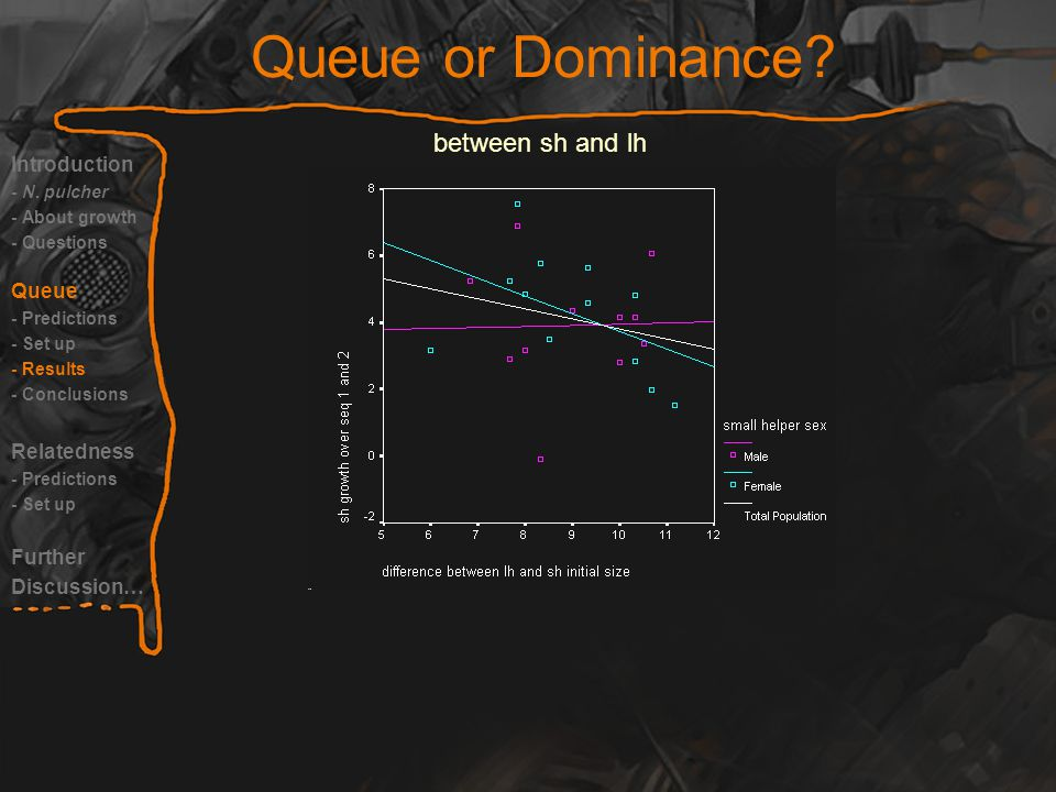 Queue or Dominance. Introduction - N.