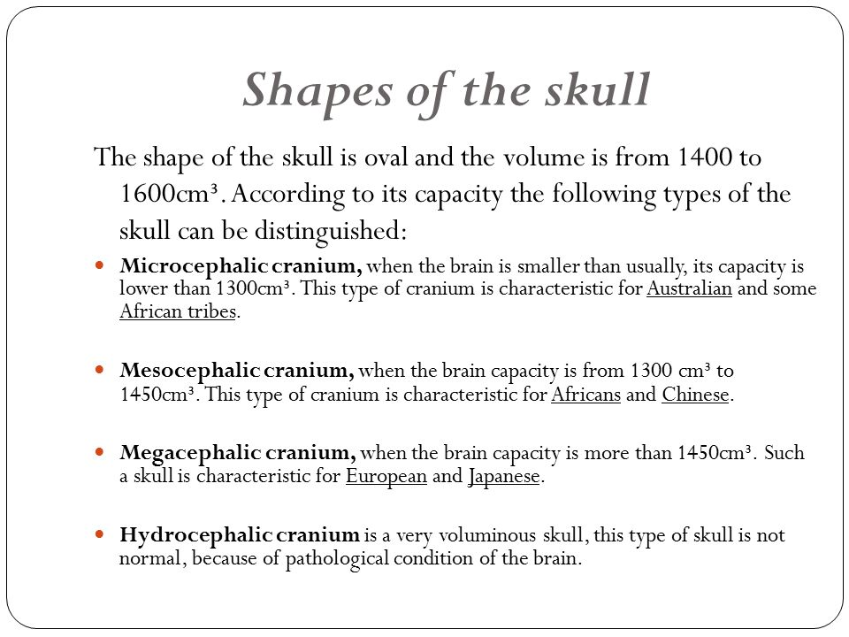 Shapes of the skull The shape of the skull is oval and the volume is from 1400 to 1600cm³.
