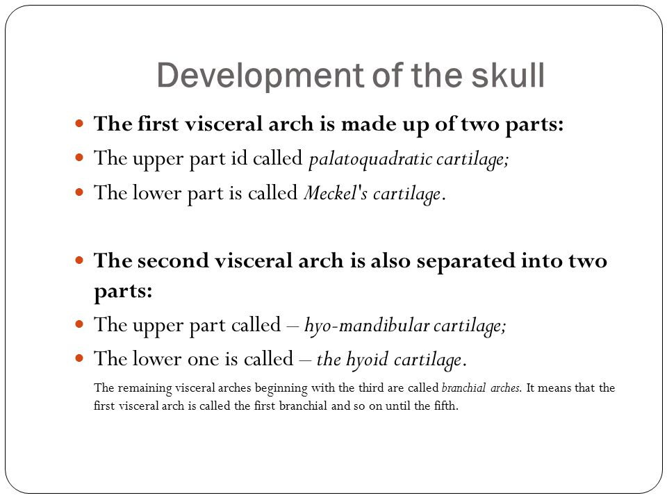Development of the skull The first visceral arch is made up of two parts: The upper part id called palatoquadratic cartilage; The lower part is called Meckel s cartilage.