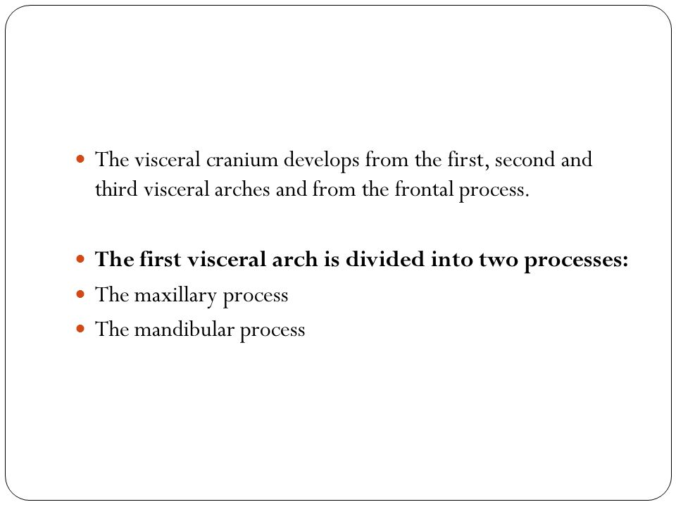 The visceral cranium develops from the first, second and third visceral arches and from the frontal process.