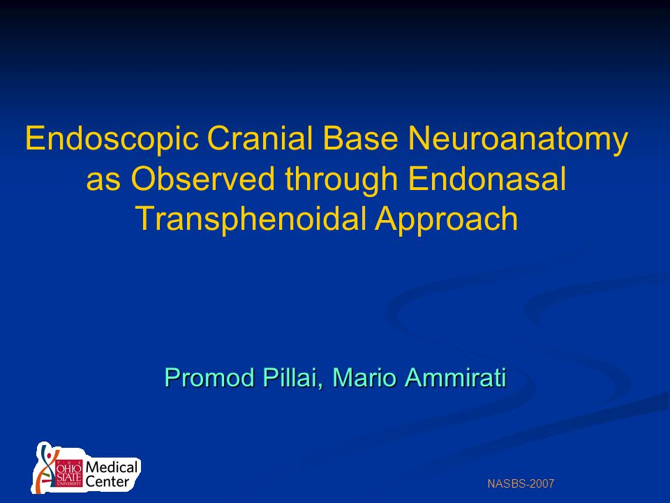 NASBS-2007 Endoscopic Cranial Base Neuroanatomy as Observed through Endonasal Transphenoidal Approach Promod Pillai, Mario Ammirati