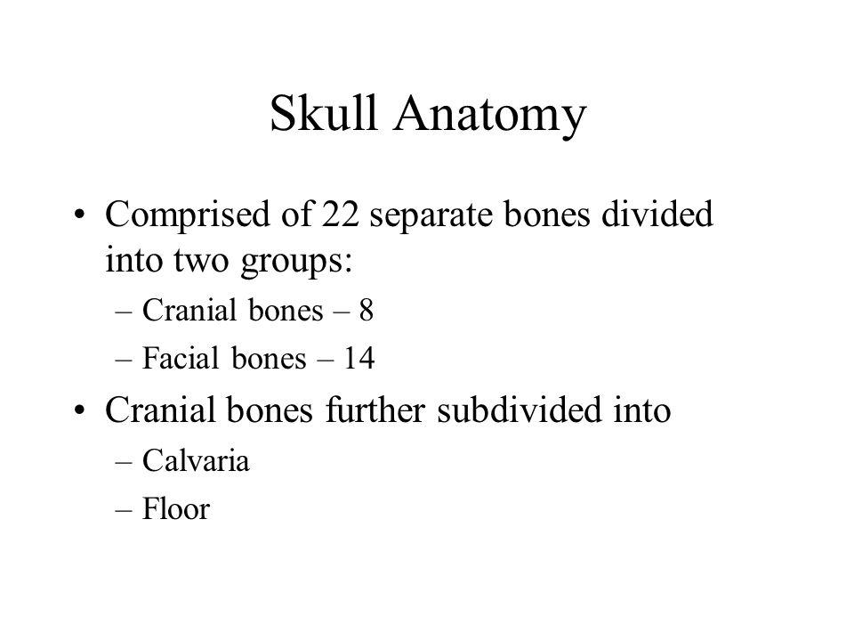 Skull Anatomy Comprised of 22 separate bones divided into two groups: –Cranial bones – 8 –Facial bones – 14 Cranial bones further subdivided into –Cal