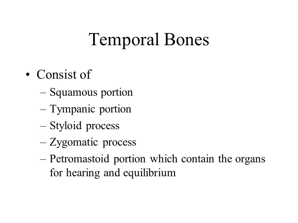 Temporal Bones Consist of –Squamous portion –Tympanic portion –Styloid process –Zygomatic process –Petromastoid portion which contain the organs for h