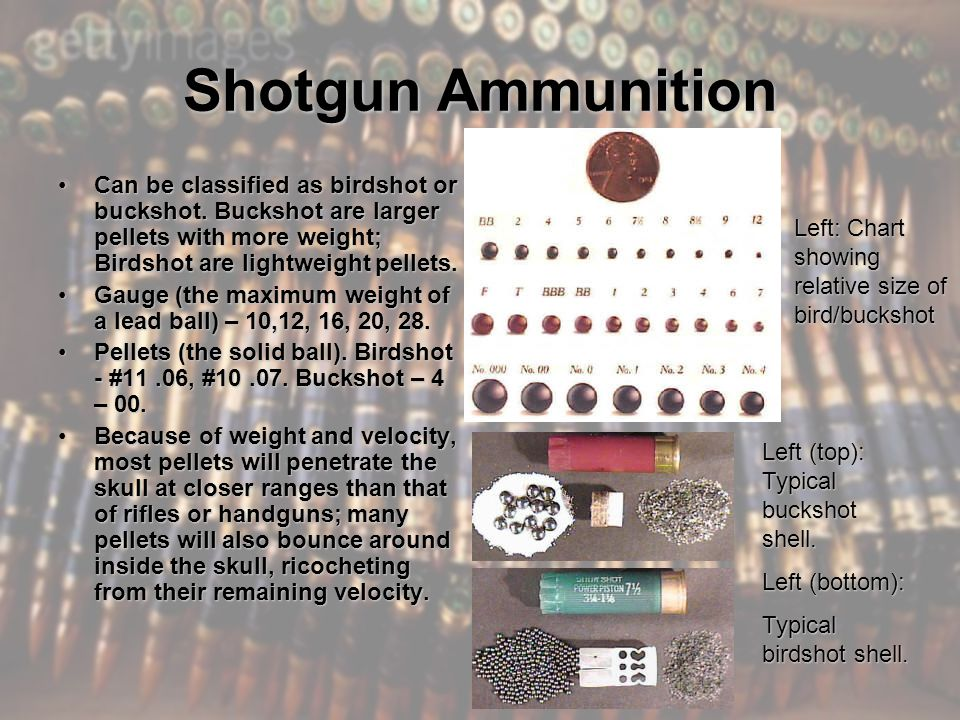 Shotgun Ammunition Can be classified as birdshot or buckshot.