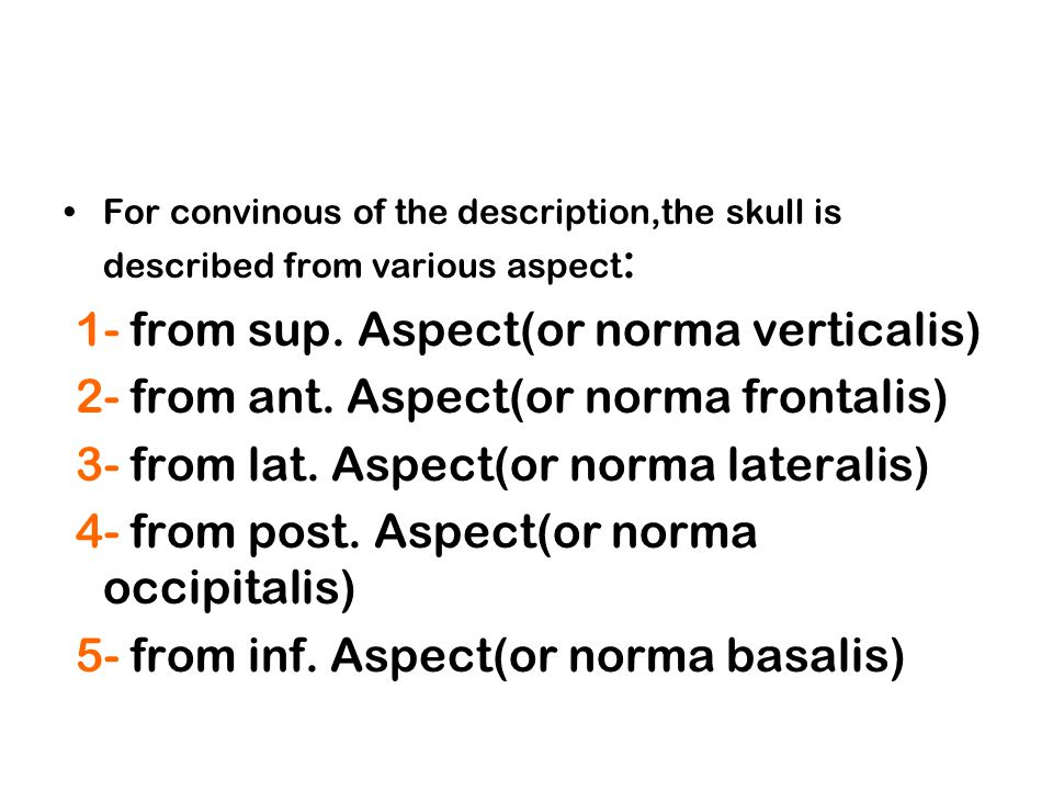 1- from sup.Aspect(or norma verticalis) Now we are going to describe sup.