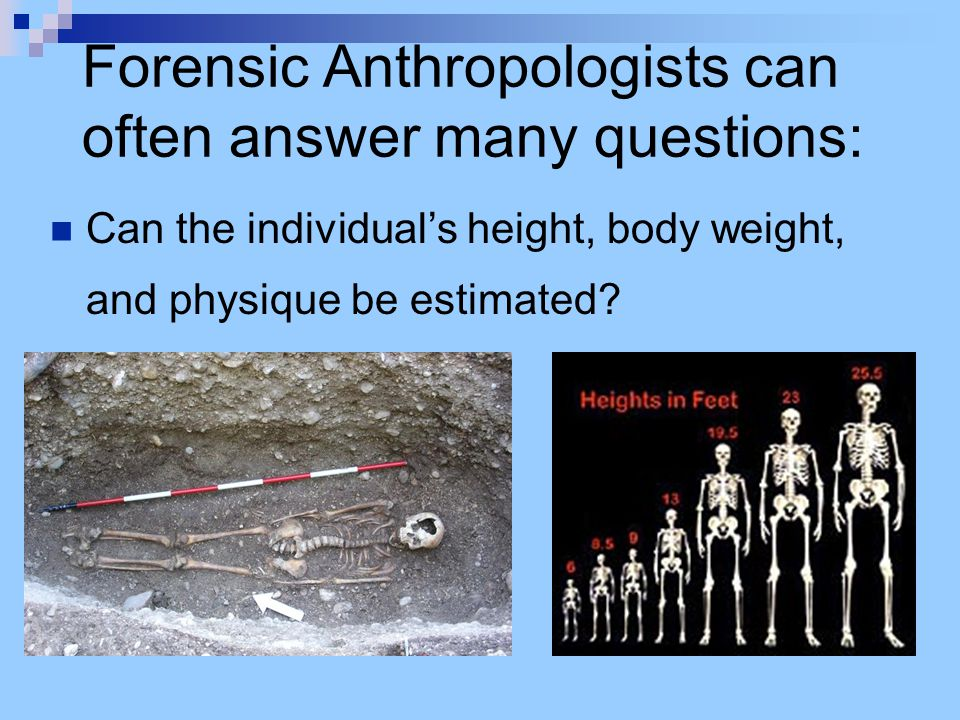 Forensic Anthropologists can often answer many questions: Can the individual's height, body weight, and physique be estimated