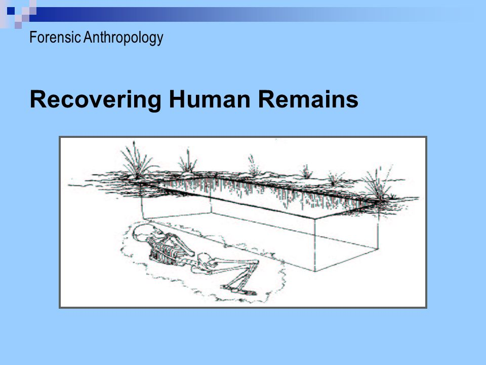 Locating Human Remains  Cadaver dogs  Remote sensing methods Forensic Anthropology > Recovering Remains