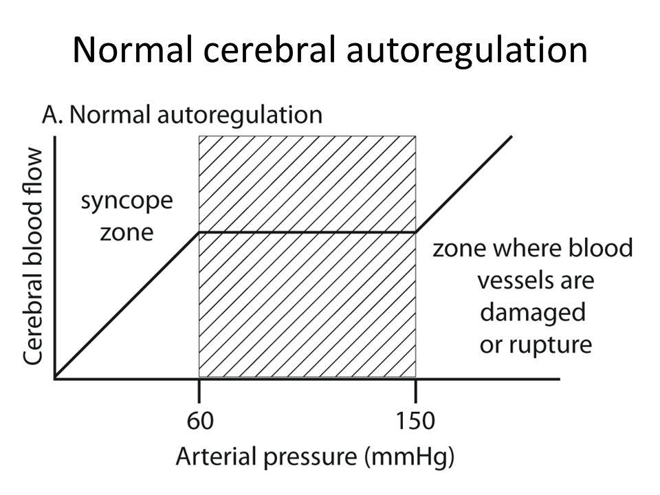 Hypertension and autoregulation