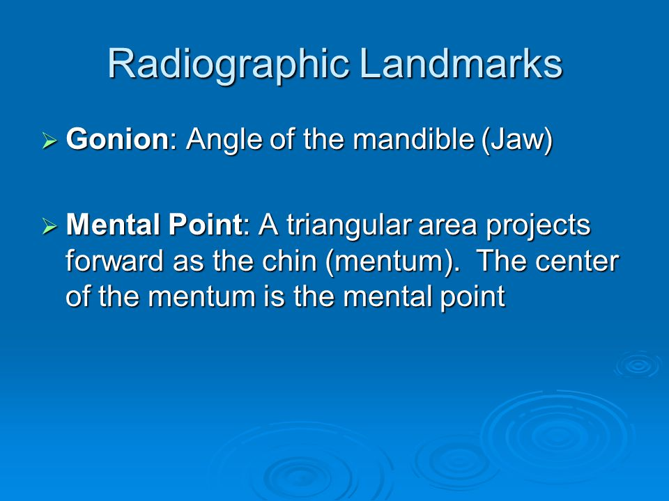 Radiographic Landmarks  Gonion: Angle of the mandible (Jaw)  Mental Point: A triangular area projects forward as the chin (mentum). The center of th