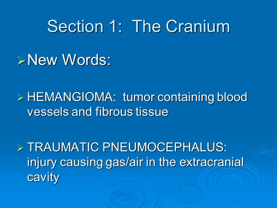 Section 1: The Cranium  New Words:  HEMANGIOMA: tumor containing blood vessels and fibrous tissue  TRAUMATIC PNEUMOCEPHALUS: injury causing gas/air
