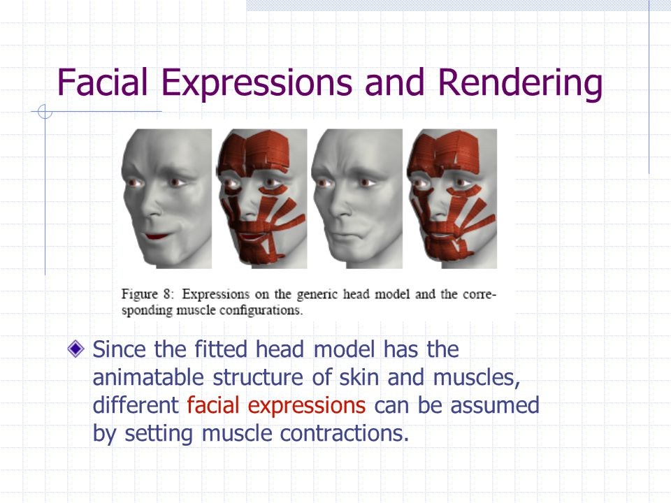 Since the fitted head model has the animatable structure of skin and muscles, different facial expressions can be assumed by setting muscle contractions.
