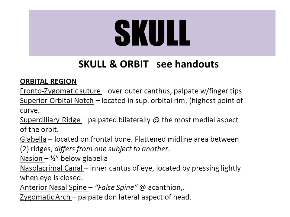 SKULL & ORBIT see handouts ORBITAL REGION Fronto-Zygomatic suture – over outer canthus, palpate w/finger tips Superior Orbital Notch – located in sup.