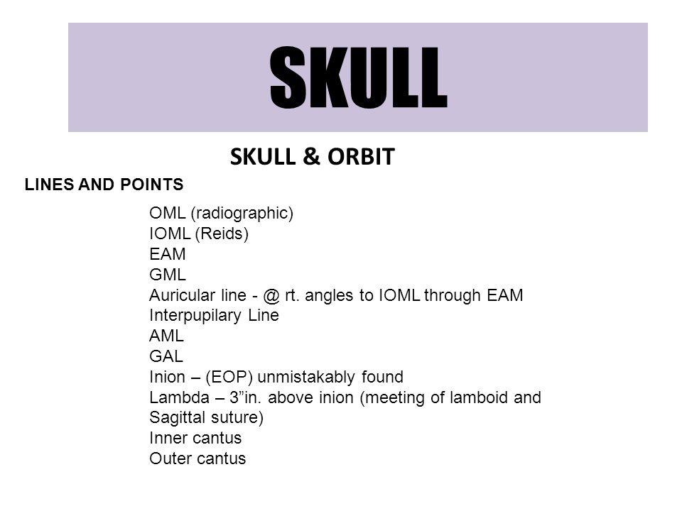SKULL SKULL & ORBIT LINES AND POINTS OML (radiographic) IOML (Reids) EAM GML Auricular line - @ rt. angles to IOML through EAM Interpupilary Line AML