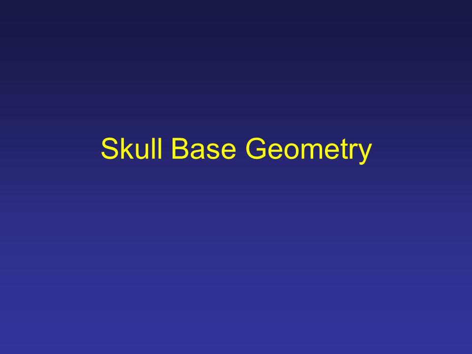 Skull Base Geometry