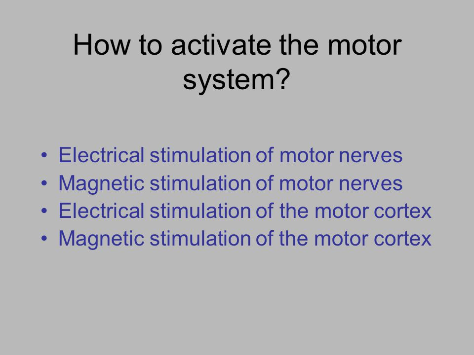 How to activate the motor system? Electrical stimulation of motor nerves Magnetic stimulation of motor nerves Electrical stimulation of the motor cort